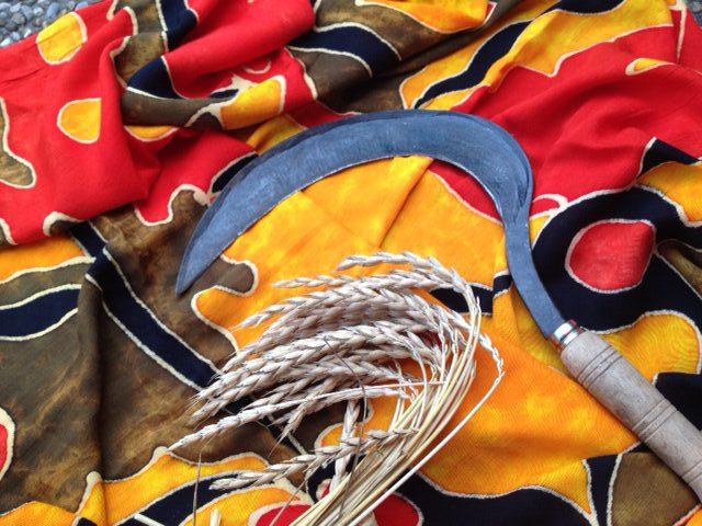 Im Jahreskreisfest der Schnitterin können wir mit der Sichel rituell abschneiden, was wir nicht mehr in unserem Leben haben möchten
